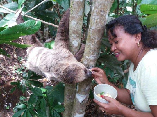 Animal caretaker Yvonne hand-feeding Beertje