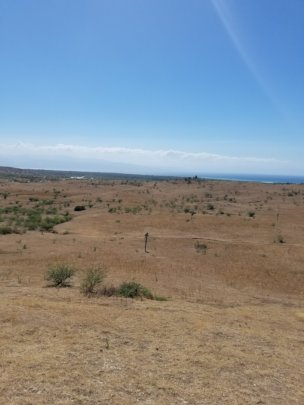 Property in Leveque