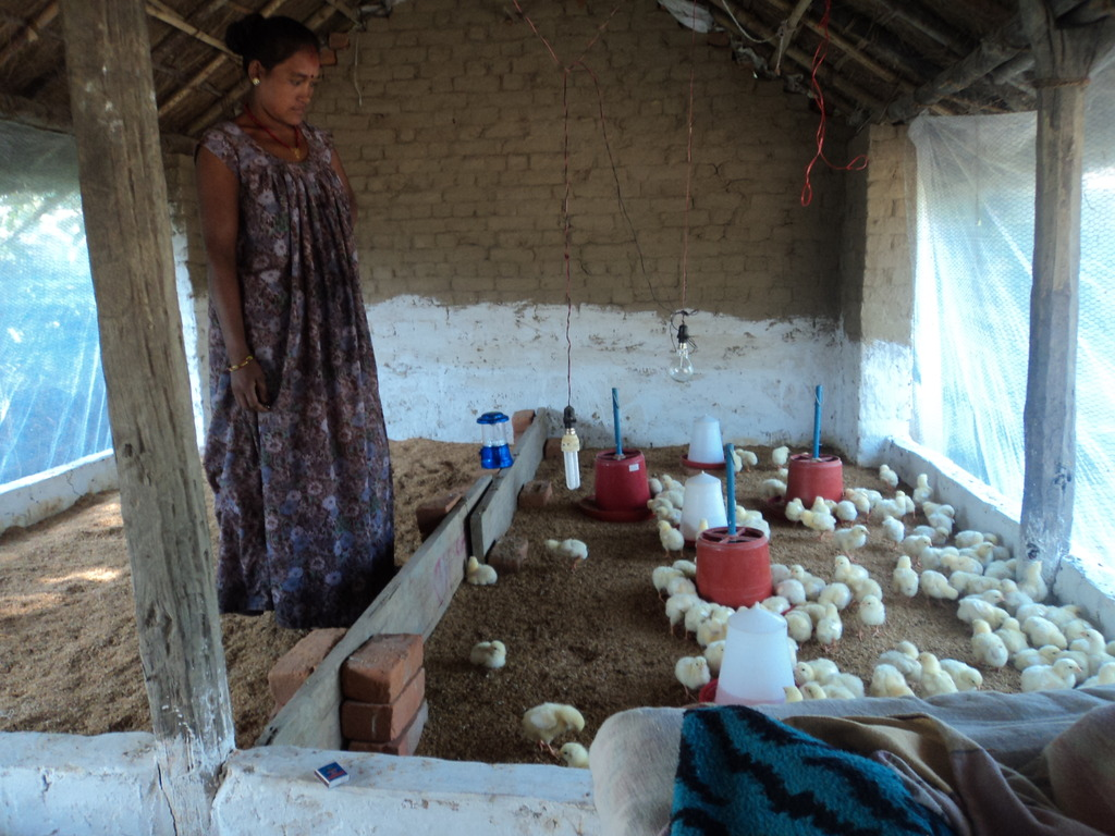 Sita at her poultry farm