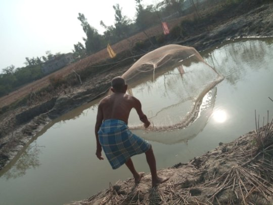 Part of Pond based Integrated Farming- Fishery