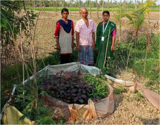 Tanima* - father & Health Worker: Nutrition Garden
