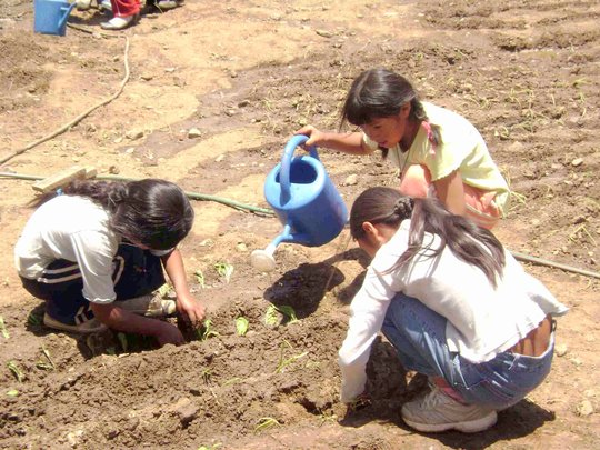 Children learning to garden at MAP Bolivia