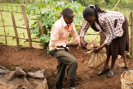 Student Stanley makes a compost pit at home