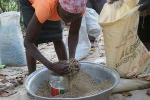 Distributing rabbit feed