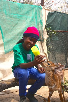Feeding a baby antelope at the camp!