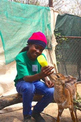 Feeding a baby antelope at the camp!