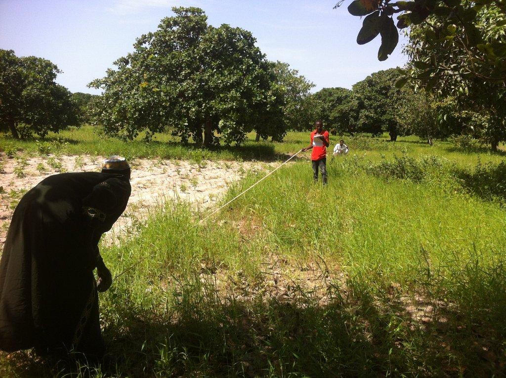 Jalambang Nursery and Youths project Association