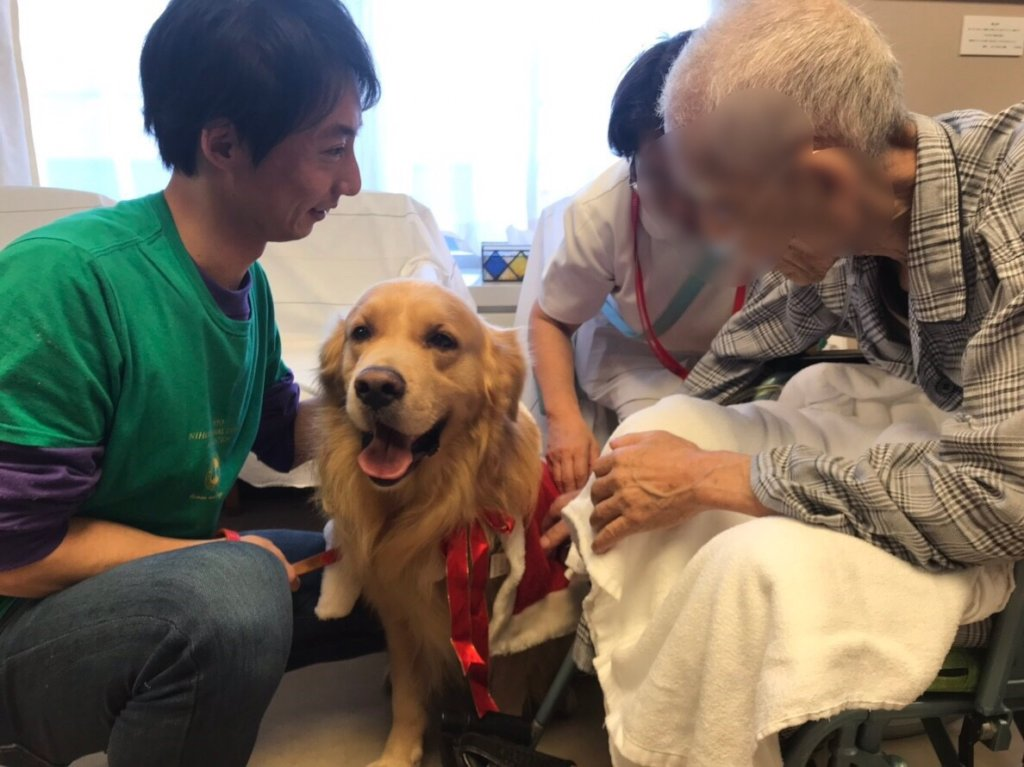 Animal Assisted Therapy at palliative care unit