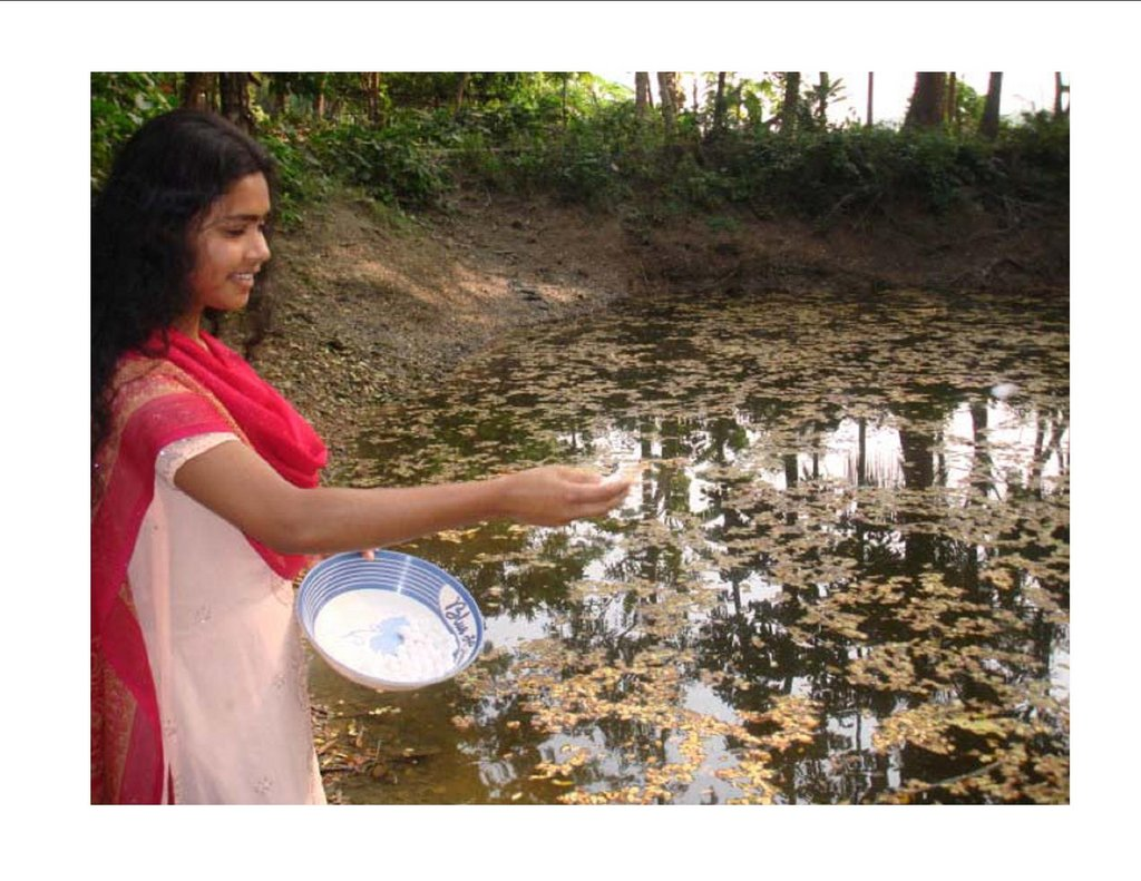 Rema feeds fish in the fish pond she started.
