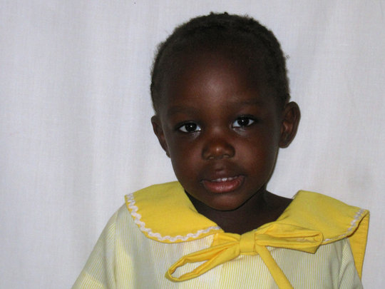 A Year of Meals for Novelle