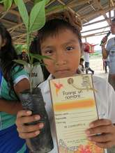 Awareness campaign and reforestation program