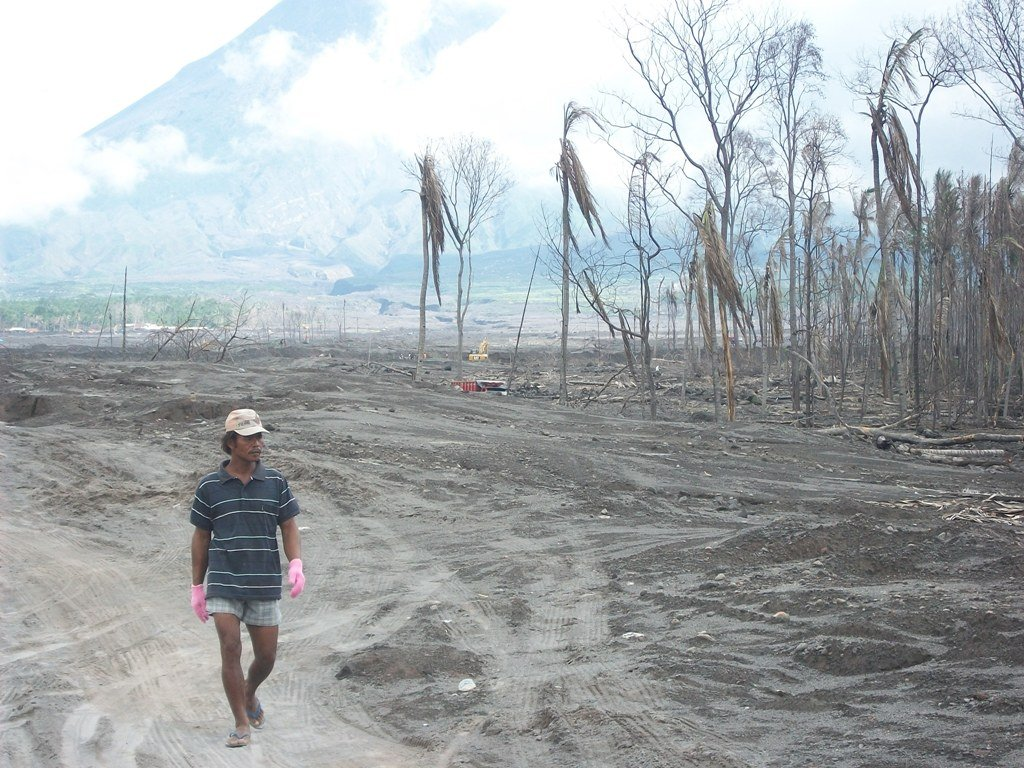 one location of tree planting on the slopes of Mount Merapi after the eruption of Mount Merapi in October 2010