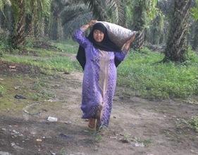 Indonesian Poor Women