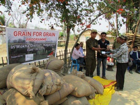Grain for Grain