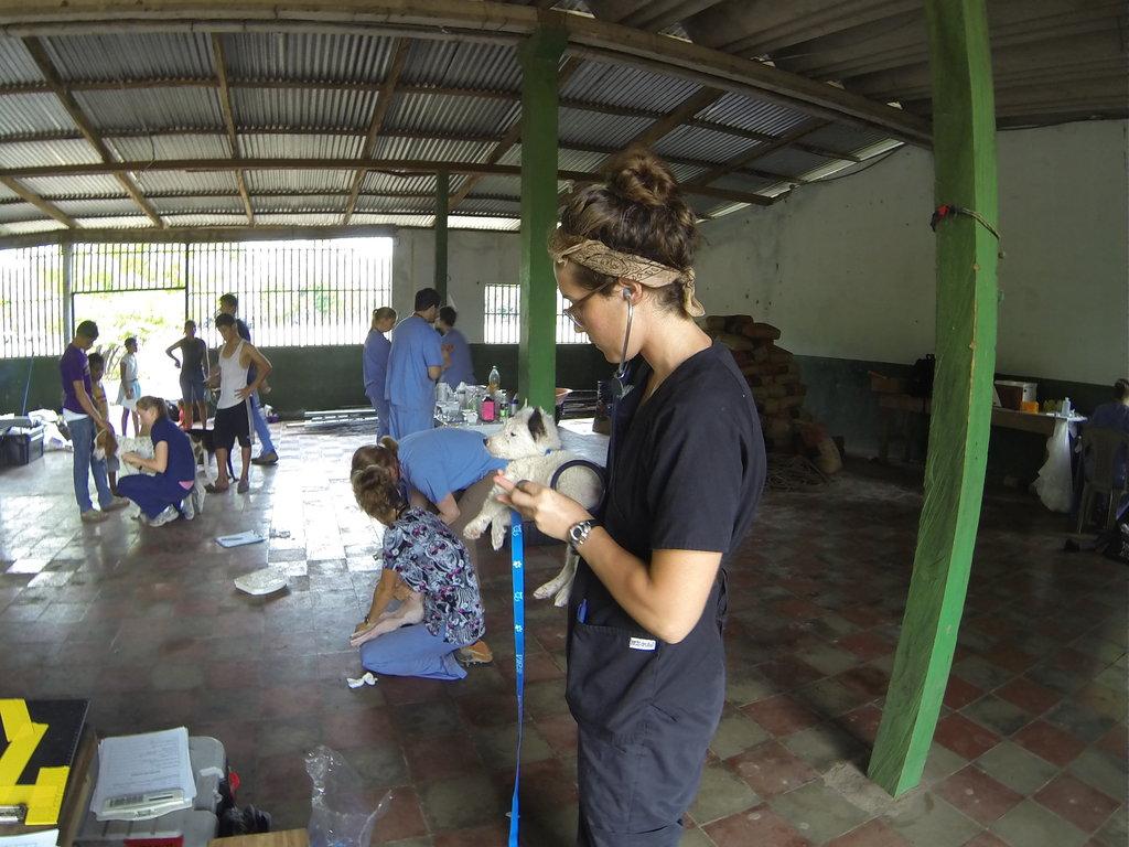 International Veterinary Outreach: Nicaragua