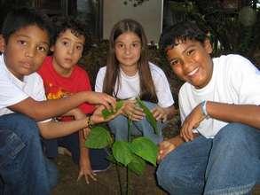 Chocó Forest in Medellín (2006)