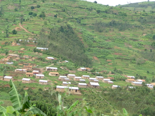 Help Rwandan women learn to farm, support families