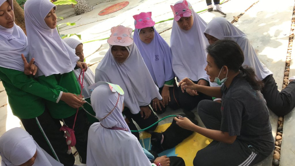Educating local girls about cat care
