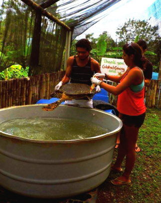 Fresh water bath at the center