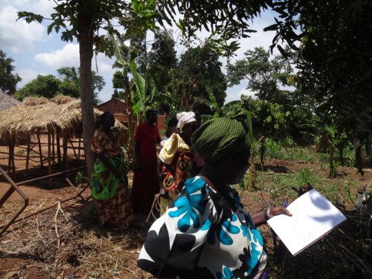 Site of local women's goat cooperative