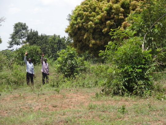 Land donated by the Community!