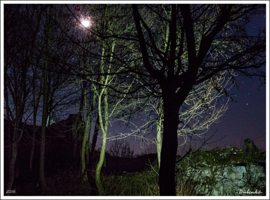 Szadvar by night (G. Bubenko)