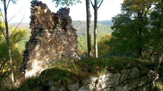 Ruins in the Fall
