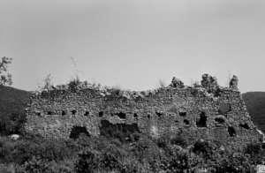 'Porkolab' wall in 1993