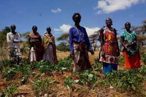 Naatum's Women's Group, Laikipia