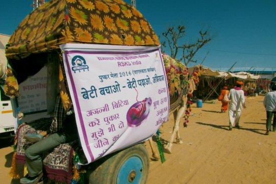 Camel cart Road show in pushkar fair