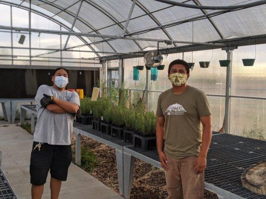 Drop-off at Santa Fe Indian School greenhouse
