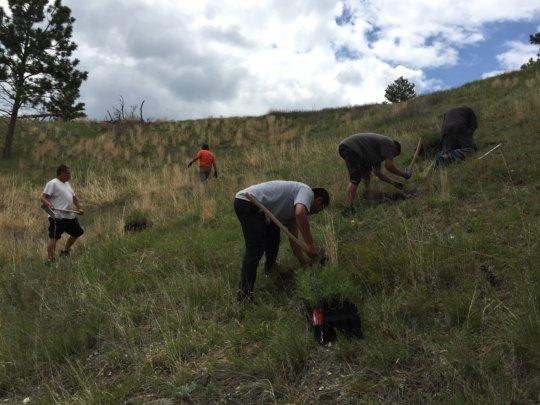Residents of Pine Ridge, SD work to plant trees