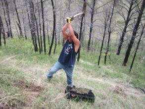 Planting trees is hard work!