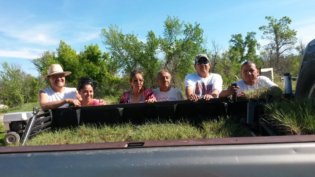 Help Plant Trees on the Pine Ridge Reservation