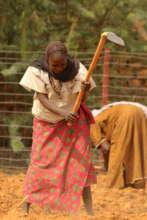 Women working in the garden