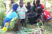 Women's Community Gardens in Niger