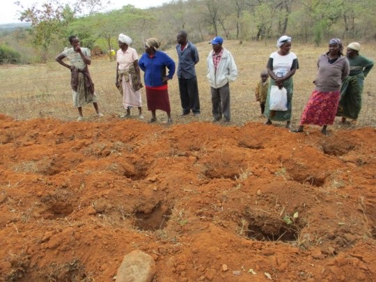 FARMERS LEARNING HOW TO DIG HOLES