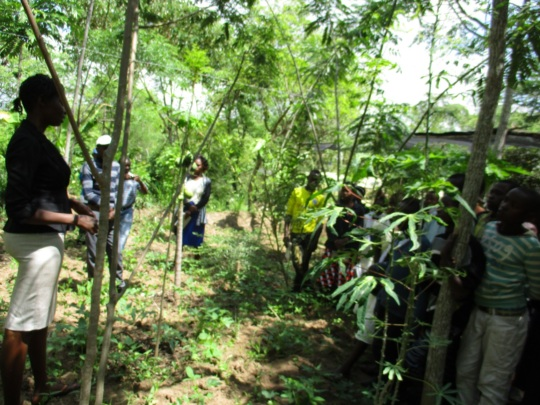 students learning from our food forest