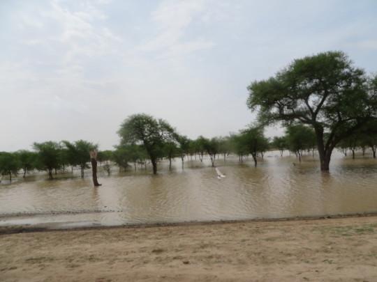 Floods in 2020