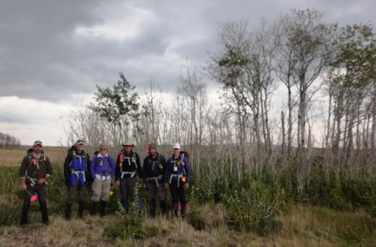 Earthwatch volunteers in an aspen sapling stand