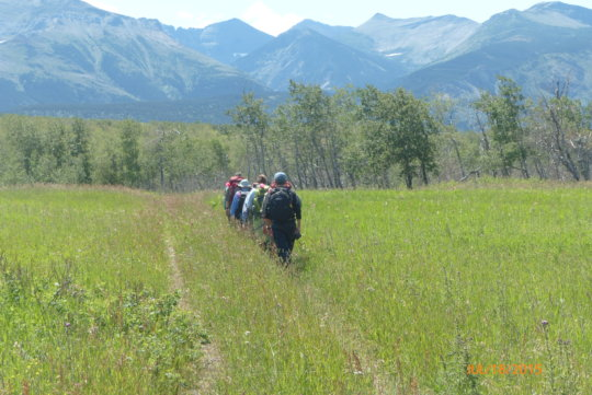 Volunteers heading to a research site