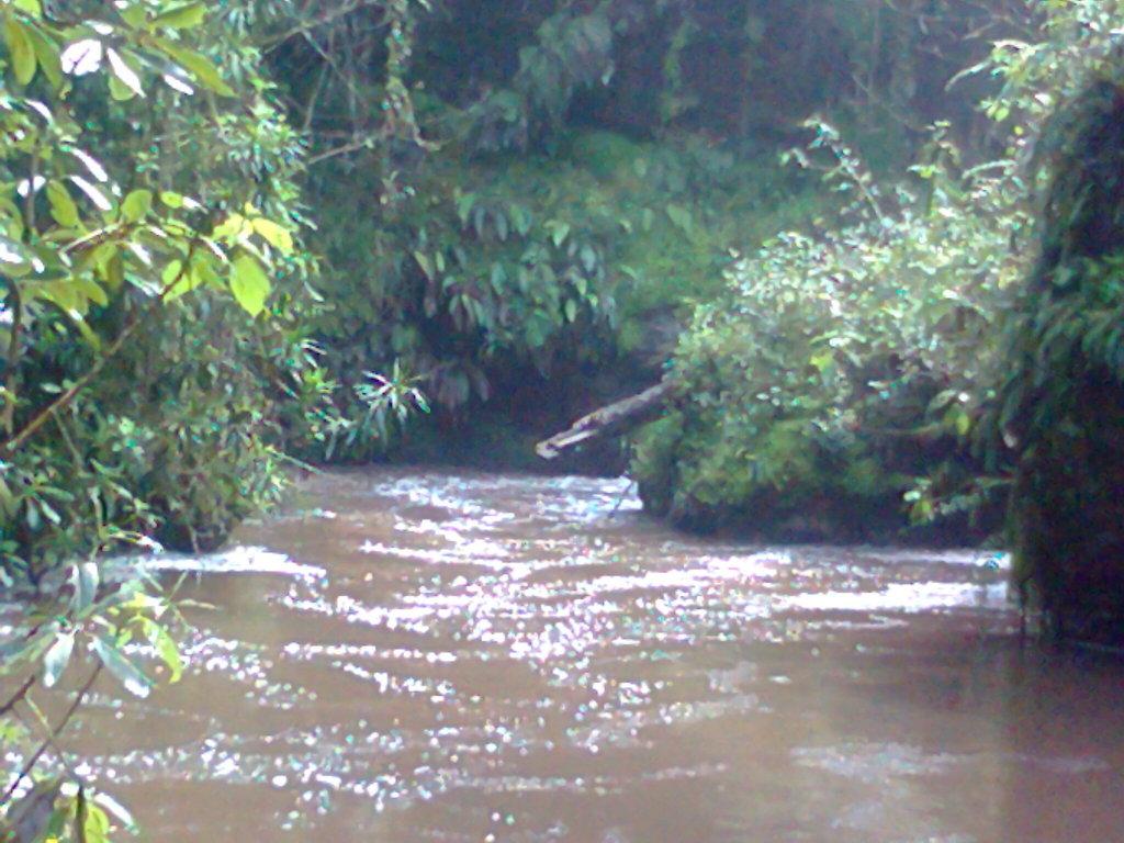 river nzoia