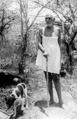 Ramana Maharshi and his favorite dog.