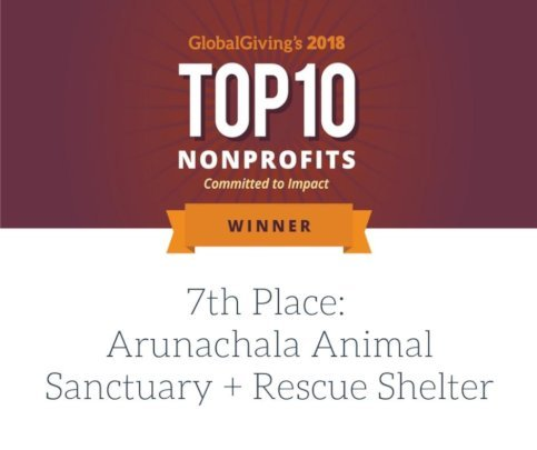 Honored by Global Giving in 2018--7th out of 4000.