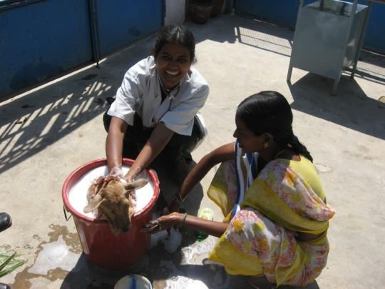 Getting a bath from Dr. Pushpa? Very good karma.
