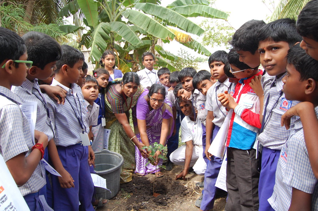Plant a Tree - Save the Earth