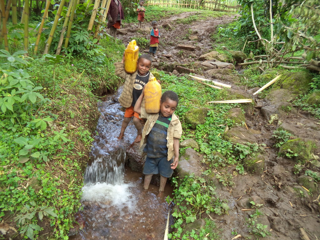 Bring clean water to an Ethiopian village of 1729