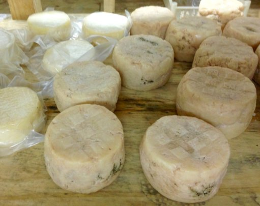 Goat cheese from the shepherd