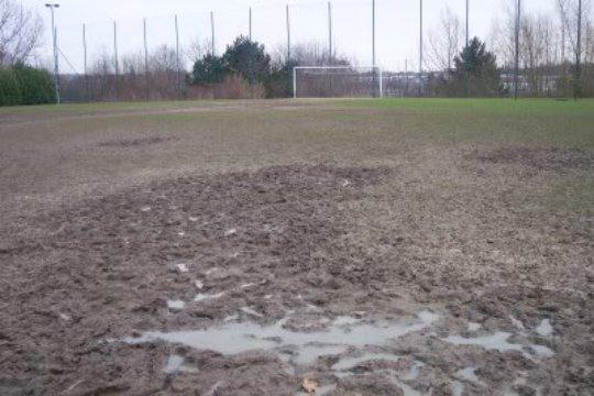 Muddy Field