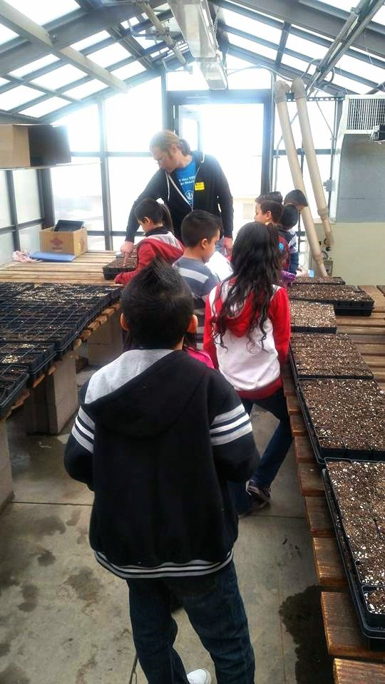 Create Garden Classrooms at 3 Low-Income Schools